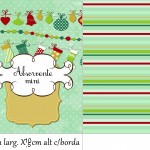 Molde Absorvete Mini Natal Fofinho Verde e Bordô